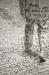 Hamlice - Compagnia della Fortezza / Armando Punzo